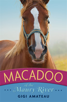 macadoo-cover
