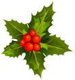 Transparent_Christmas_Mistletoe_Clipart