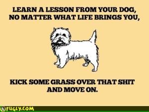 good_advice_mutt